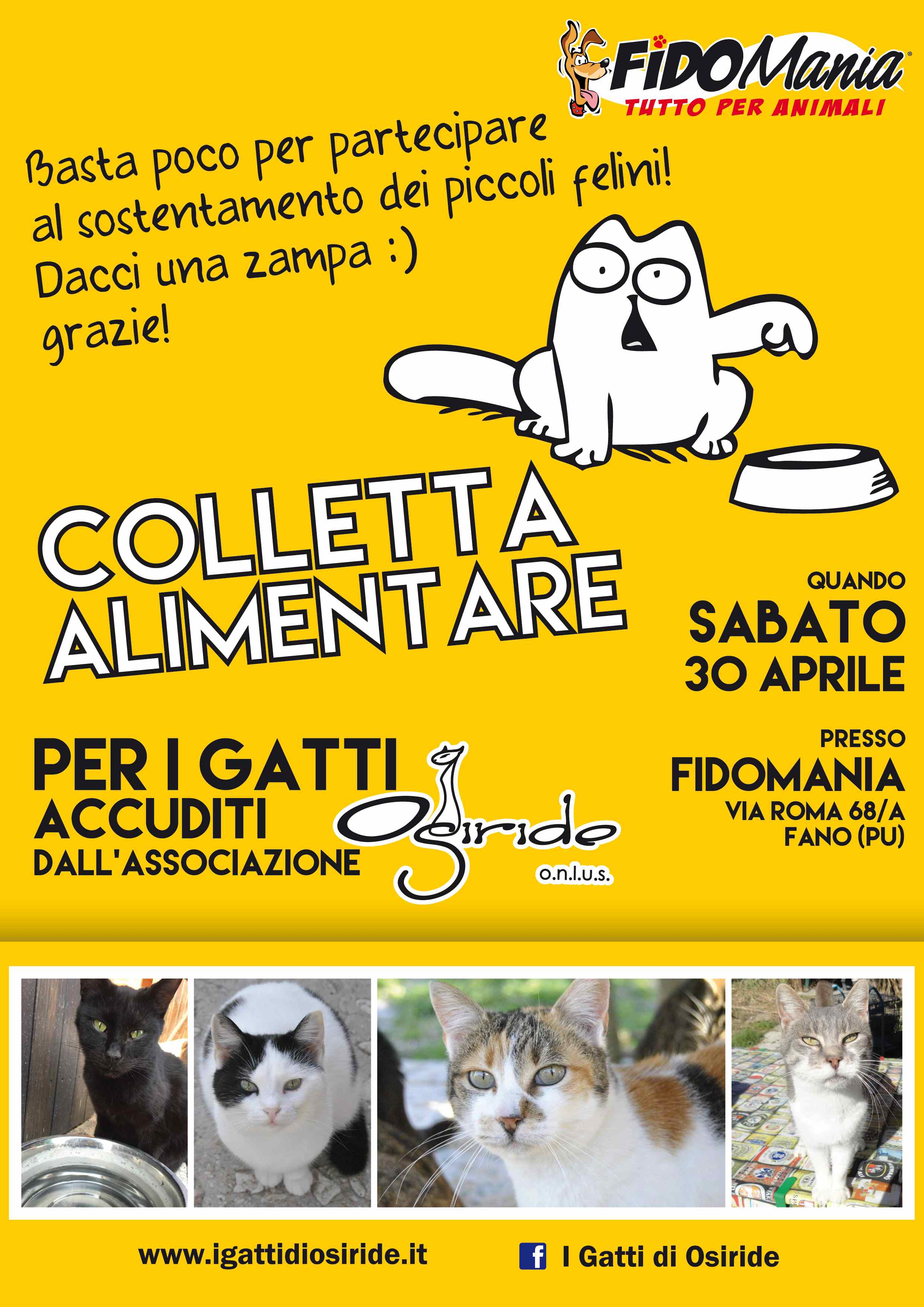 Colletta Alimentare Fidomania lht