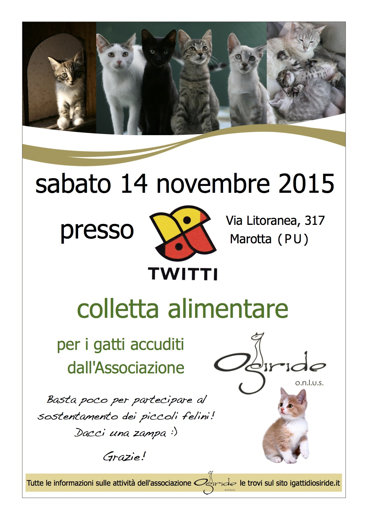 colletta alimentare twitty